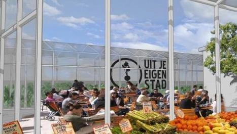 Urban Farming Gets Professional | Vertical Farm - Food Factory | Scoop.it