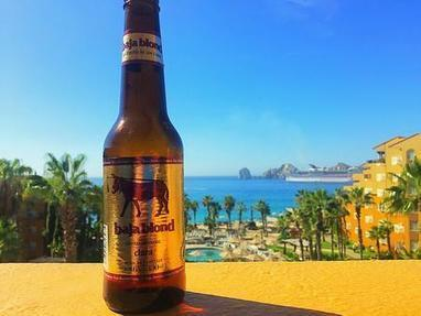 Baja Brewing   Baja California   Scoop.it