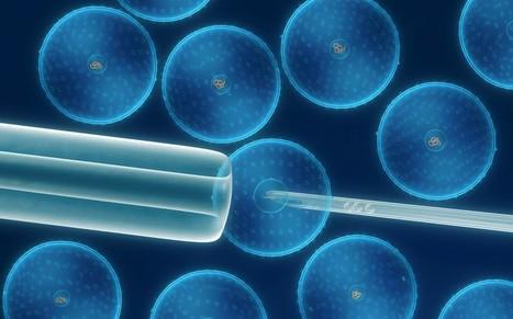 Cancer gene not 'undruggable' | BIOSCIENCE NEWS | Scoop.it
