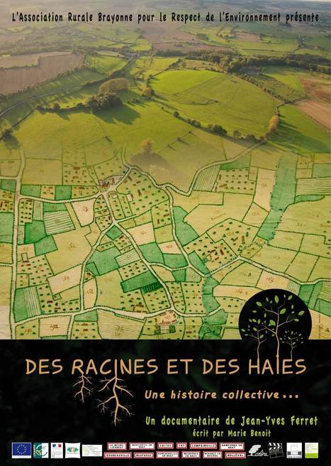 Des racines et des haies - Documentaire - Beaubec Productions | DD Haute-Normandie | Scoop.it