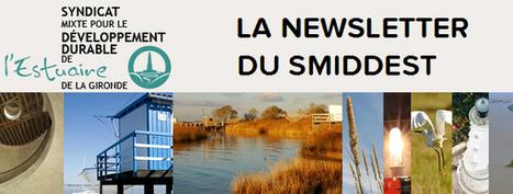 Le nouveau site du SMIDDEST est en ligne !   Brèves d'estuaire   SMIDDEST   Scoop.it