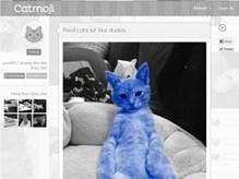 Apprendre à tchatter à un chat tchatcheur | SoonSoonSoon.com | Bonheur-National-Brut | Scoop.it