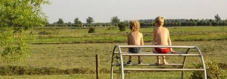 Eén jaar zelfvoorzienend leven.   Permacultuur in Nederland   Scoop.it