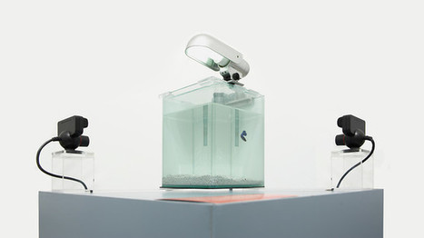 A Fish Swims In A Tank, Carving A Sculpture As It Goes | Digital Design and Manufacturing | Scoop.it