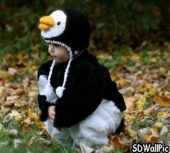 Penguin Baby Costume | Free HD Desktop Wallpapers Download Online | Funny Pic And Wallpapers | Scoop.it