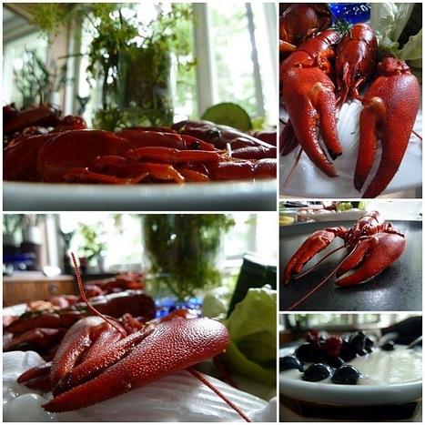 lumo lifestyle: Crayfish party | Finland | Scoop.it