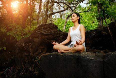 The Mental Health Benefits Of Meditation: It'll Alter Your Brain's Grey Matter ... - Medical Daily   Tetra Health   Scoop.it