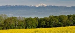 The Six Things To Consider If You Want To Live In Switzerland   Finding Work Abroad   Scoop.it