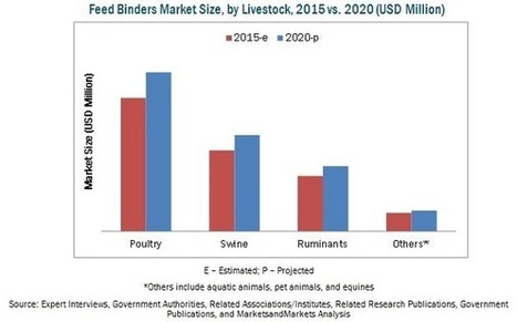 Feed Binders Market by Type, Livestock, Application, Region - 2020 | MarketsandMarkets | Market research | Scoop.it