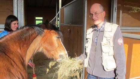 Oehninger auf dem Ponyhof - Schweizer Radio und Fernsehen | Gebärdensprachen | Scoop.it