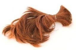 La chute des cheveux - Pharmacie de Cortot | Chute de cheveux | Scoop.it