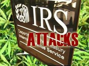 IRS Morality: Defend Planned Parenthood, Audit Adoptive Families | Life Vigil | Scoop.it