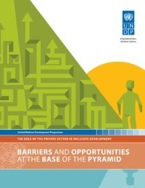 Barriers and the Opportunities at the Base of the Pyramid - The Role of the Private Sector in Inclusive Development | UNDP | Inclusive Business in Asia | Scoop.it