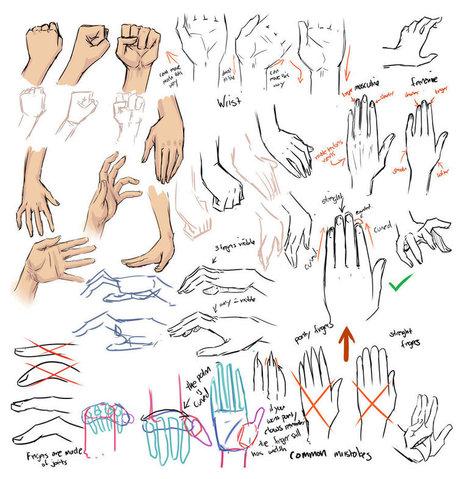 Guida di riferimento al disegno della mano | Circolo d'Arti | Scoop.it