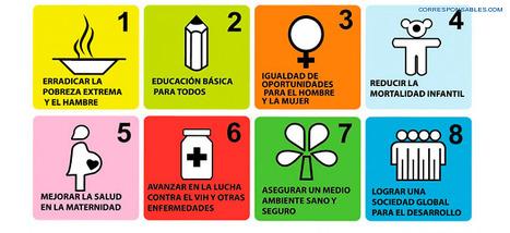 Balance y perspectivas de los ODM: las ONG toman la palabra | RSC Valor compartido | Scoop.it