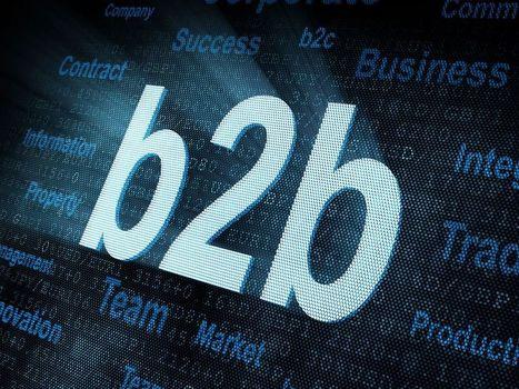 Social Media e marketing B2B: un abbinamento perfetto [Infografica] | Social Media Marketing nel B2B | Scoop.it