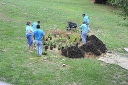 BayBlog » Blog Archive » 20 Rain Gardens in 10 Days | A Gathering of Rain Gardens | Scoop.it
