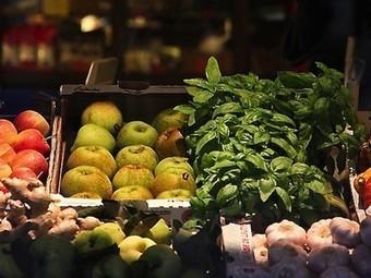 U.S. Food Waste Challenge honors of World Environment Day | Urban Aquaponics Farm | Scoop.it