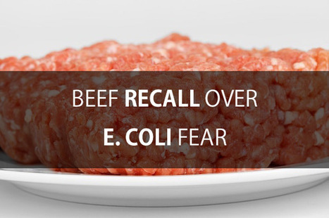 Ground Beef Recall For Possible E. Coli Contamination   Product Recalls   Scoop.it