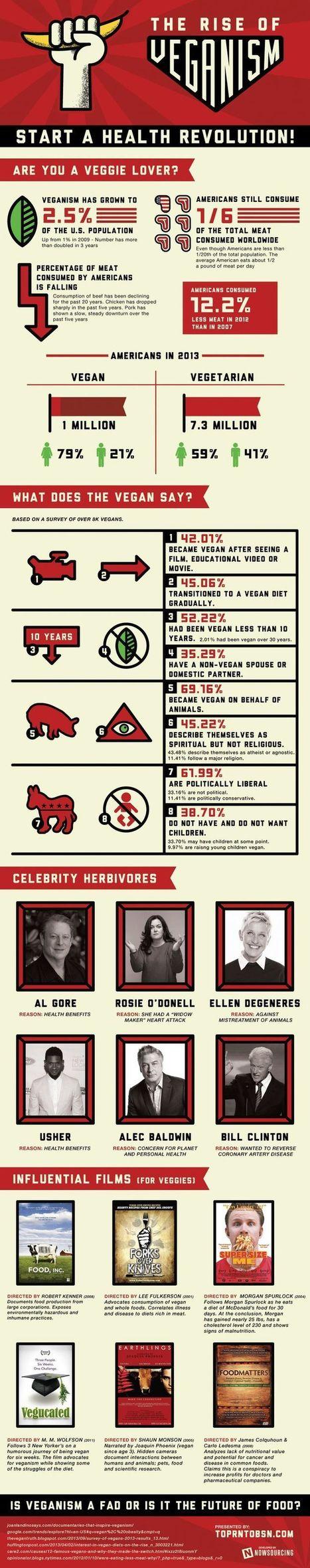 The Rise of Veganism [Infographic]   Veganism   Scoop.it