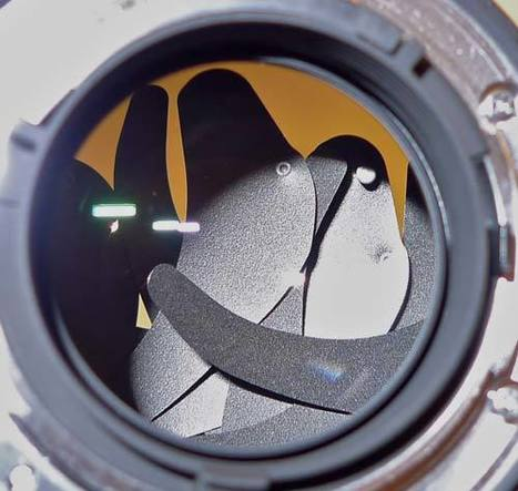 Failed aperture blades on new Nikon lens | Photography Gear News | Scoop.it