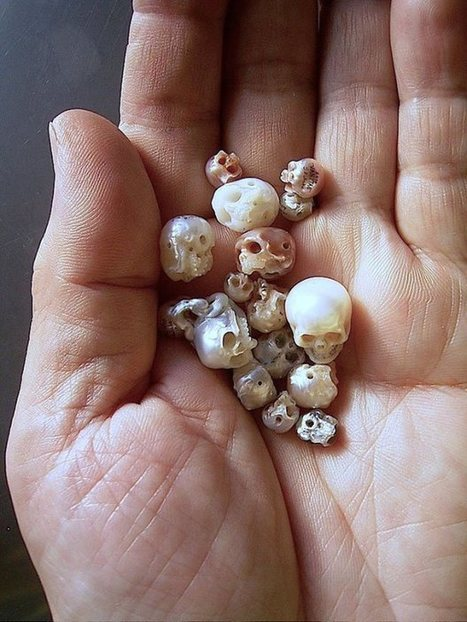Creepy Yet Beautiful: Jeweler Carves Pearls into Tiny Skulls | Strange days indeed... | Scoop.it