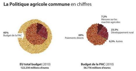 Pour Stéphane Le Foll, Bruno Le Maire a eu une attitude « inopportune » à l'égard de la PAC. | Actualité de l'Industrie Agroalimentaire | agro-media.fr | Scoop.it