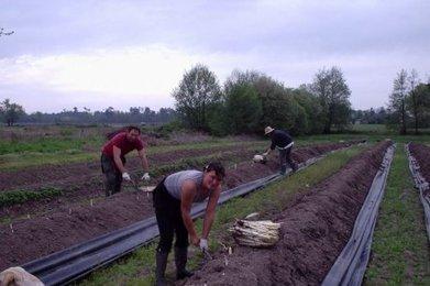 Les aides adoptées par le Département | Agriculture en Gironde | Scoop.it