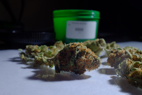 Don't rush to legalize pot - Los Angeles Times | Pain Killer the weed | Scoop.it