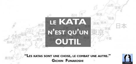 Le kata n'est qu'un outil du karaté | Imagin' Arts Tv | Scoop.it