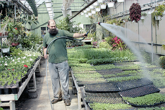 Greenhouse greets a reluctant spring - fwdailynews.com | Container-a-Gogo | Scoop.it