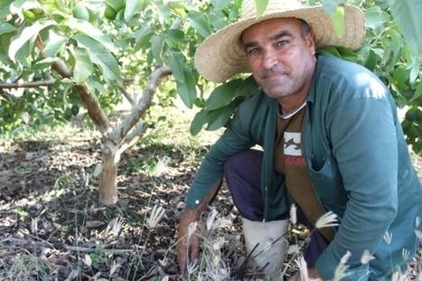 Los 'super' pequeños agricultores que derrotaron al cambio climático | Agricultura y Ganaderia | Scoop.it