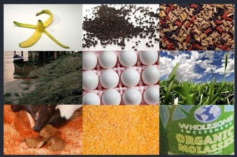 10 Natural Fertilizer Recipes | Science | Scoop.it