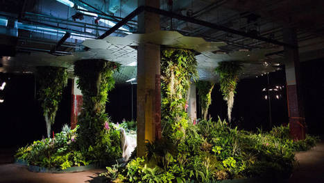 Nueva York tendrá el primer parque subterráneo del mundo. Noticias de Tecnología | Maravillas y esperanzas. | Scoop.it