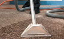 Cleaning Network, Find Dry & Steam Carpet Cleaning Services - Adelaide | Carpet Cleaning? It's Easy If You Do It Smart | Scoop.it