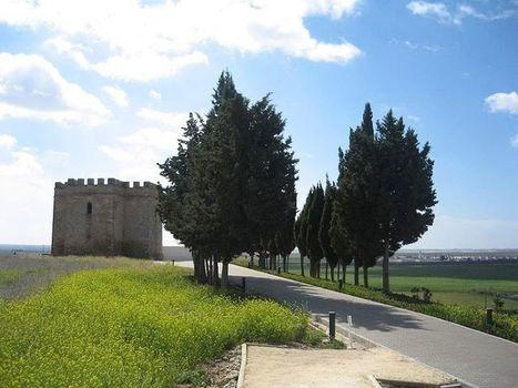 Un yacimiento fenicio perdido en el tiempo: Doña Blanca (Cádiz) | archaeological findings | Scoop.it