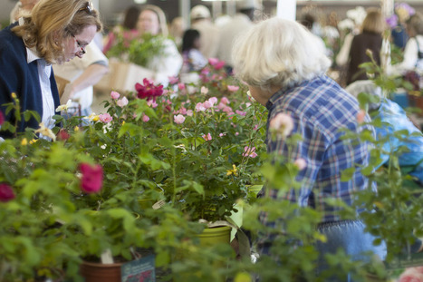Best of Birmingham - Botanical Gardens Spring Plant Sale | Annie Haven | Haven Brand | Scoop.it