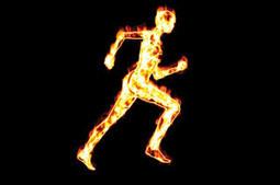 Fit Food: Metabolism - TRAINING RESPONSES | Wellness Life | Scoop.it