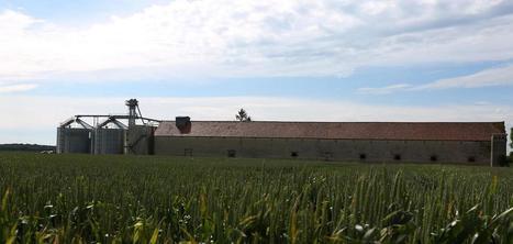 Agriculture : pourquoi les Chinois achètent nos champs - Le Parisien | Le Fil @gricole | Scoop.it