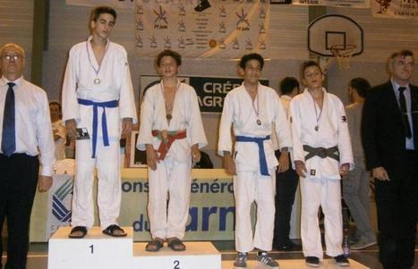 Capdenac-Gare. Judo: Romain Desgouttes s'impose au tournoi de Carmaux - LaDepêche.fr | Collège Voltaire Capdenac Gare | Scoop.it