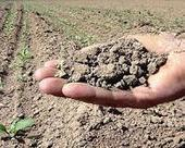 Researchers discover how soils control atmospheric hydrogen | Sustain Our Earth | Scoop.it