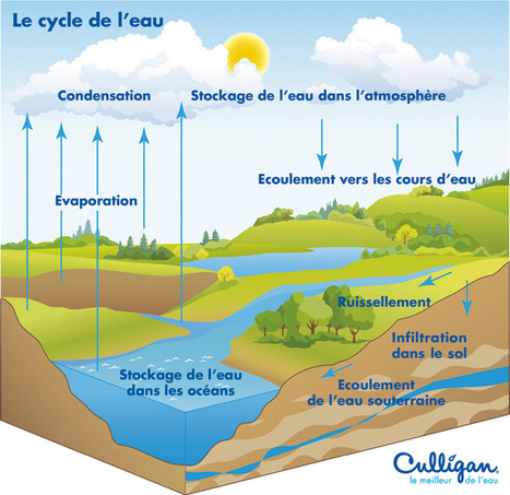 Le cycle de l'eau - Découvrez le parcours de l'eau sur la Terre | Culligan | Tout savoir sur l'eau | Scoop.it