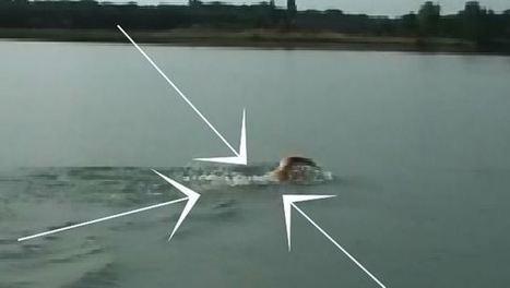 Le drafting en natation? Conseils de placement et exercices spécifiques pour bien la vague en natation   tritraining   Scoop.it