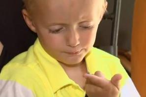 Un escargot naît dans le genou d'un petit garçon, il le baptise et l'adopte | Mais n'importe quoi ! | Scoop.it