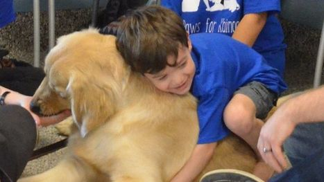 An autistic boy who can't be touched has connected with a service dog | Dyslexia, Dyspraxia, ADD, ADHD, LD, Autism (etc. conspiracy labels out there)  Education Tools & Info | Scoop.it