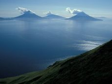 Looking for clues to an ancient massacre in the Aleutians - Alaska Dispatch | Archaeology News | Scoop.it