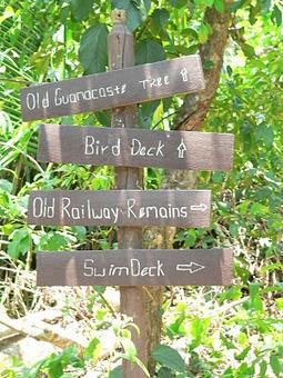 A Hike Through Guanacaste National Park | Belize in Social Media | Scoop.it