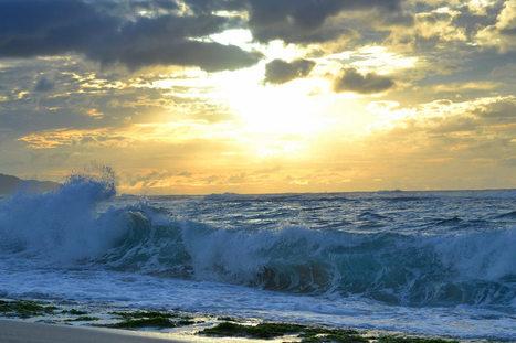 North Shore waves   ❀ hawaiibuzz ❀   Scoop.it