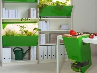"""Compost & Grow Food Indoors With """"Parasite Farm"""" By Charlotte Dieckmann & Nils Ferber 