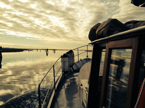 Venice Islands Excursion   Travel different   Scoop.it